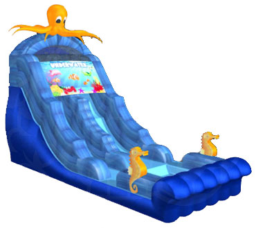 Octopus Double-Drop Water Slide